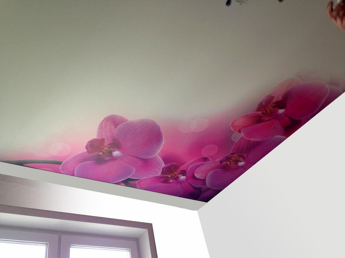 Потолок с цветами #18