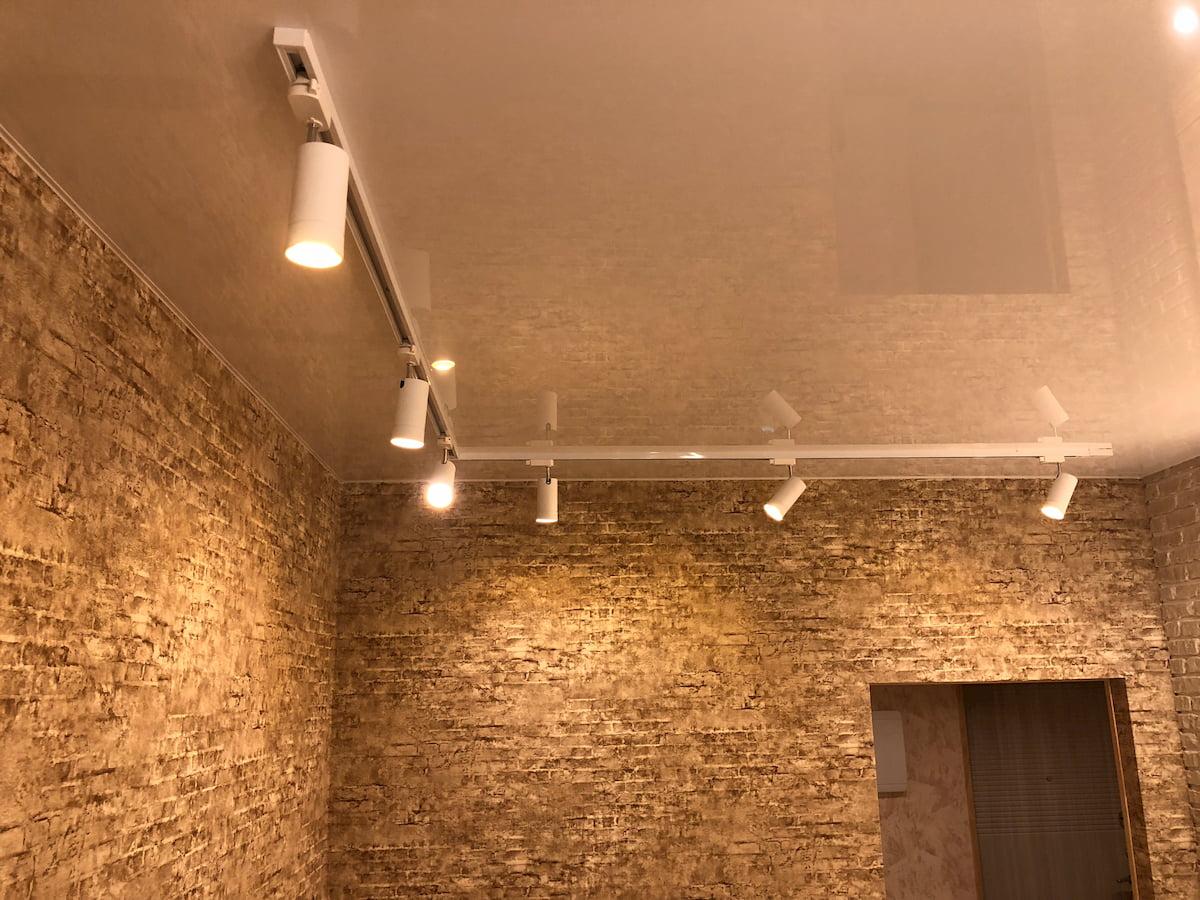 Натяжной потолок с трековыми светильниками 18