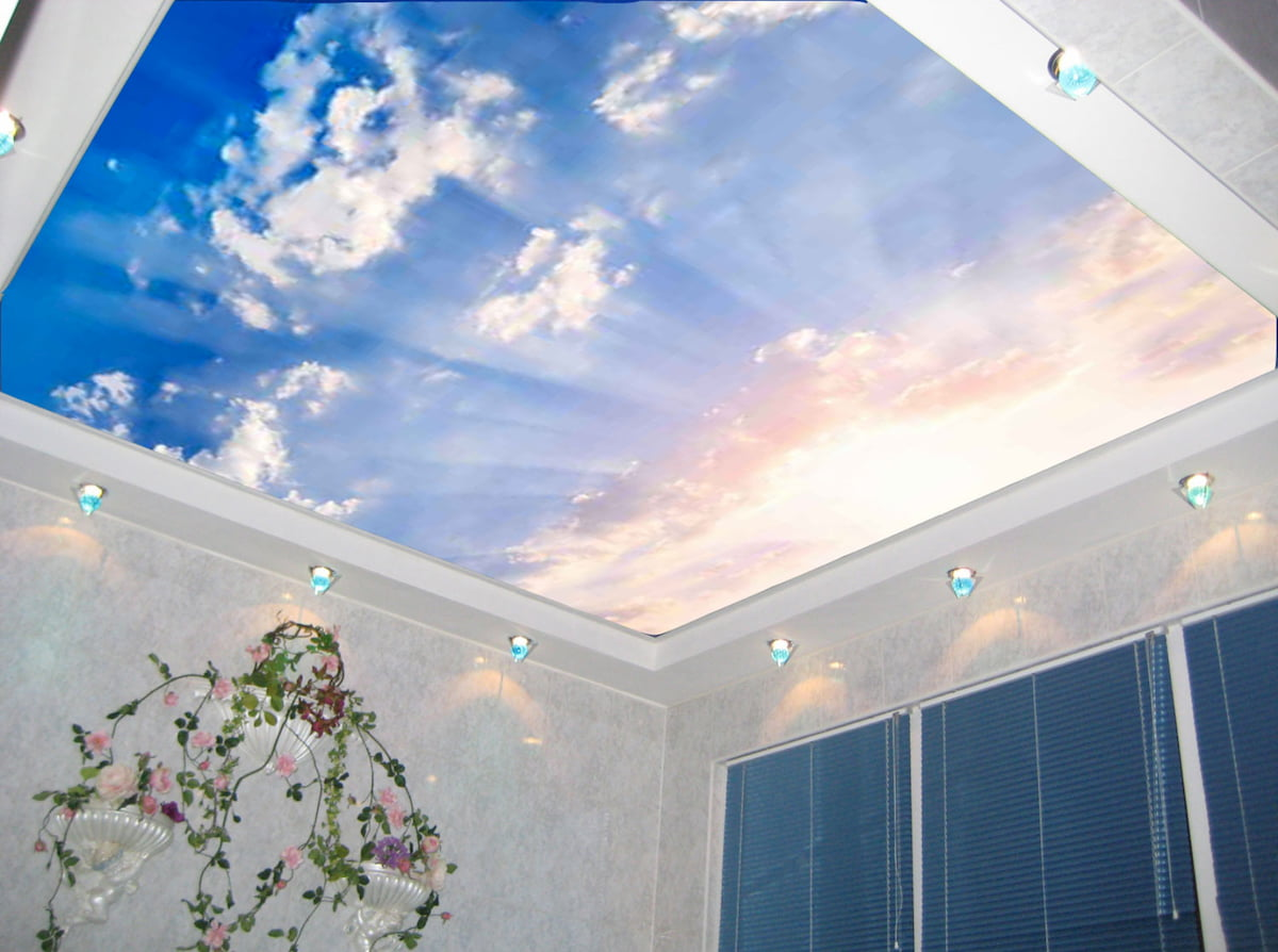 Потолок «Небо с облаками» #19