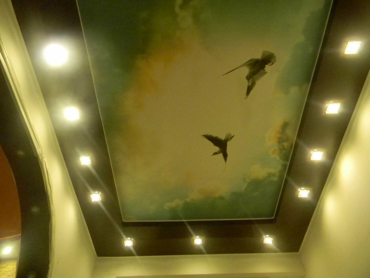 Арт потолок #19