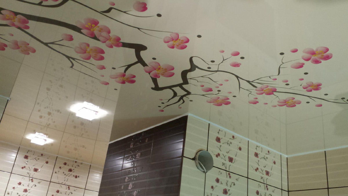 Натяжной потолок с фотопечатью 2