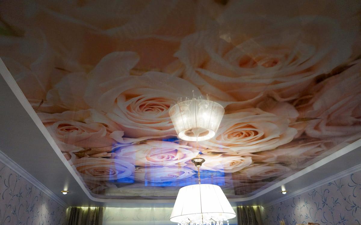 Потолок с цветами #20