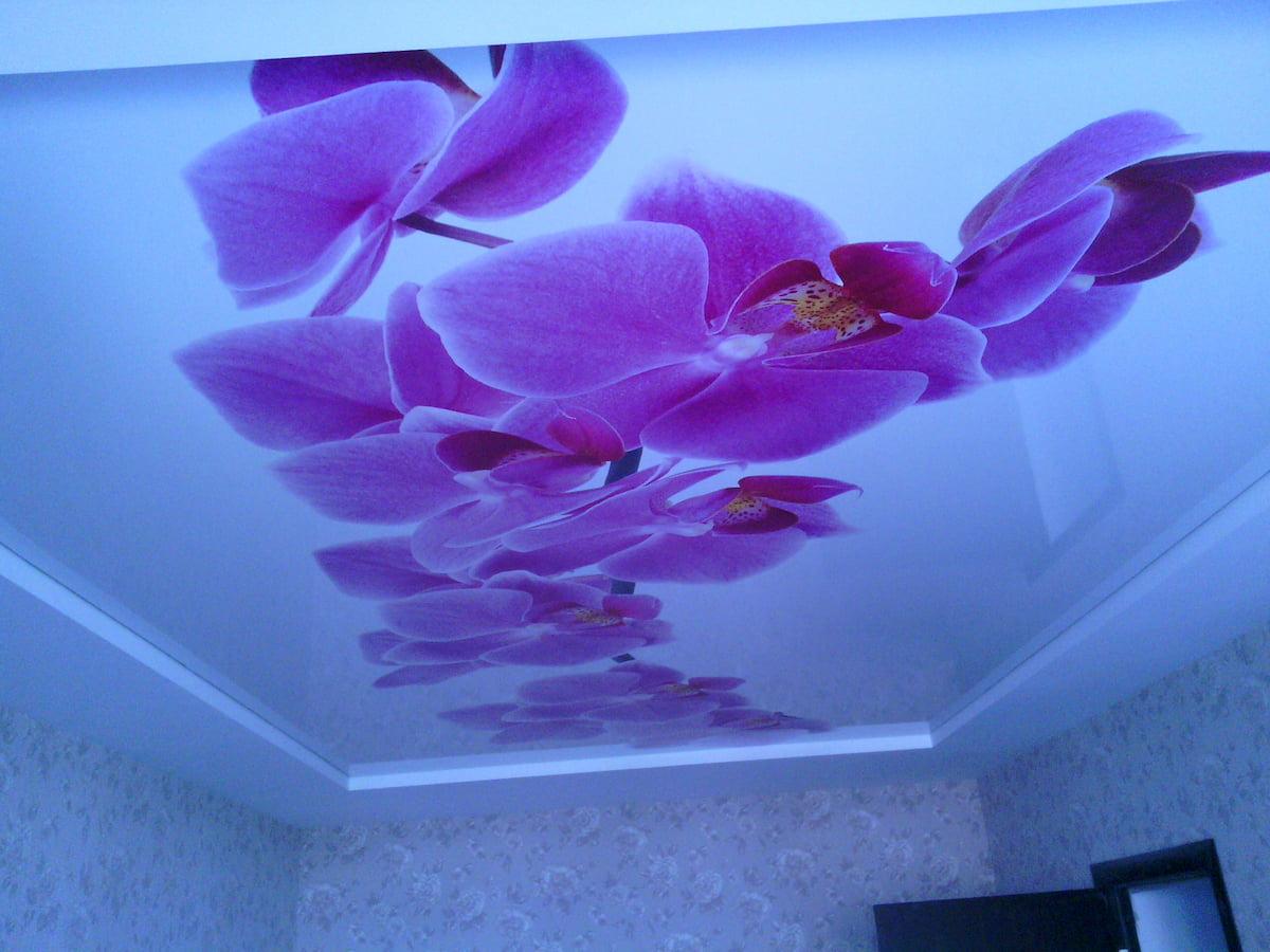 Потолок с цветами #6