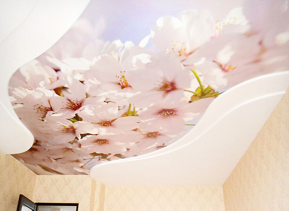 Натяжной потолок с фотопечатью 7