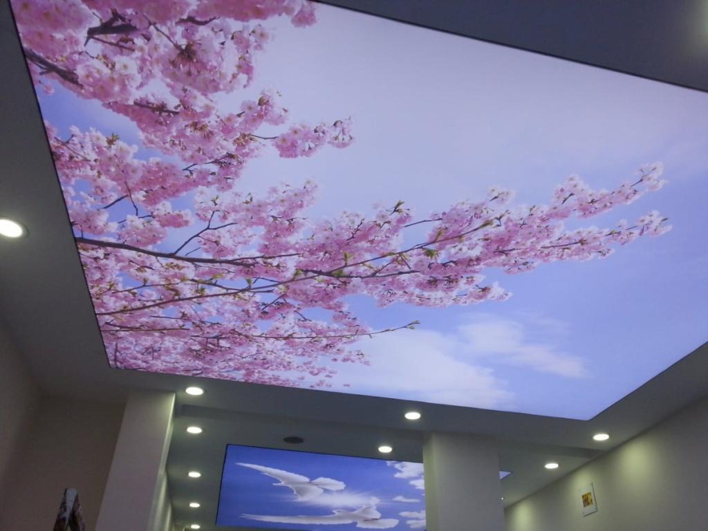 Натяжные арт потолки