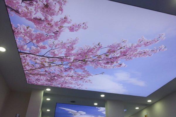 Натяжной арт потолок